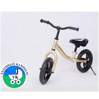 Balansinis dviratukas YQ-10 5