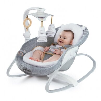 Sūpynės InGenuity by Bright Starts SmartSize 2in1  DELUXE,10583 5